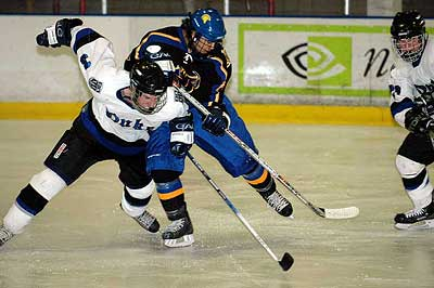 SJSU Duke Blue Devils Hockey