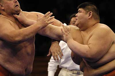 World Sumo Challenge New York